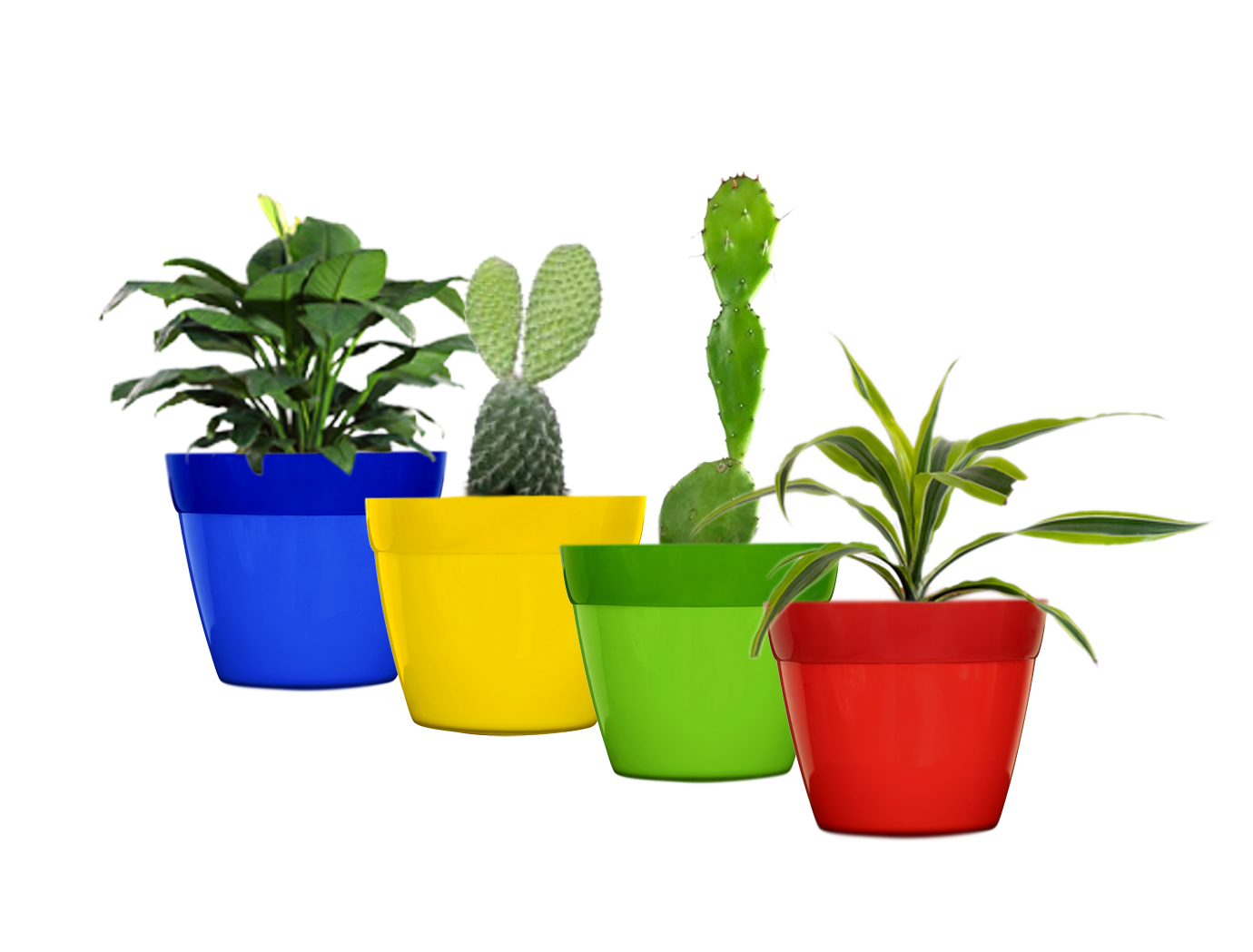 Decorative Planters Medium