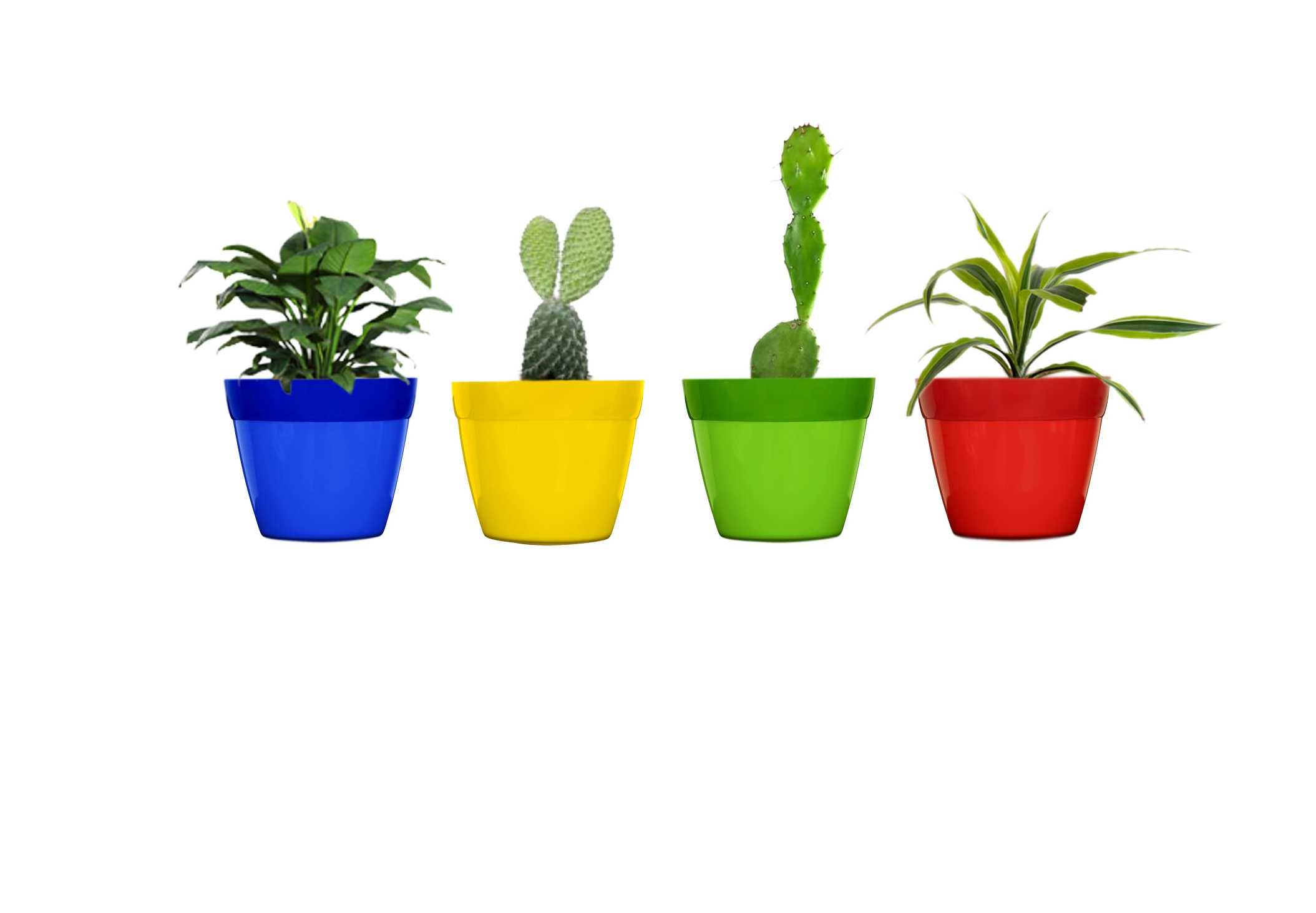 Decorative Planters Small